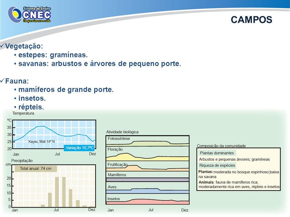 CAMPOS Vegetação: estepes: gramíneas.