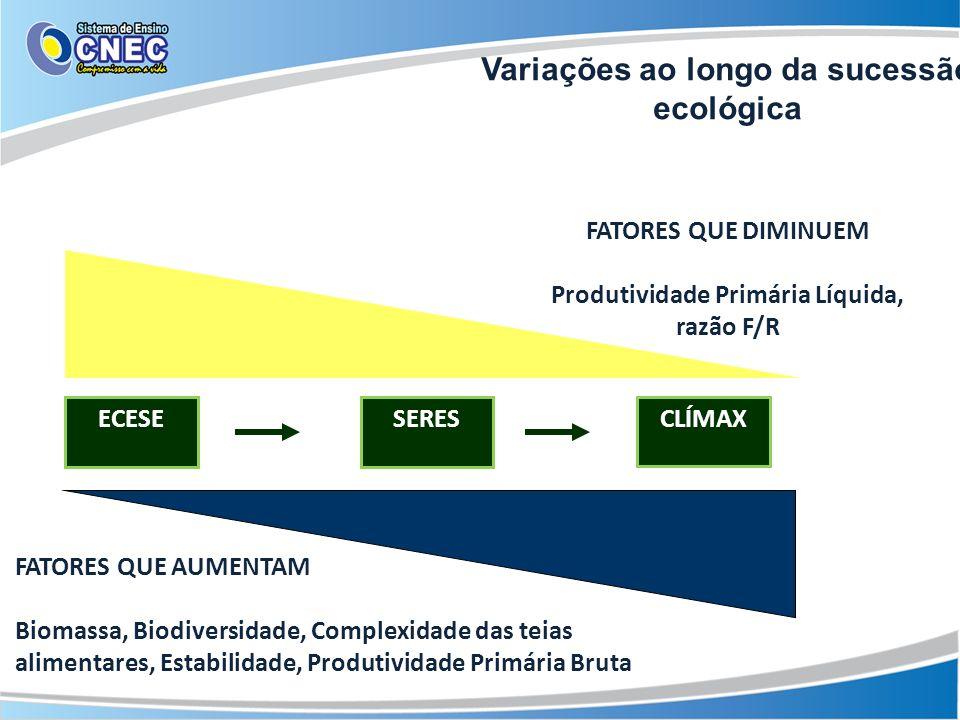 Variações ao longo da sucessão ecológica