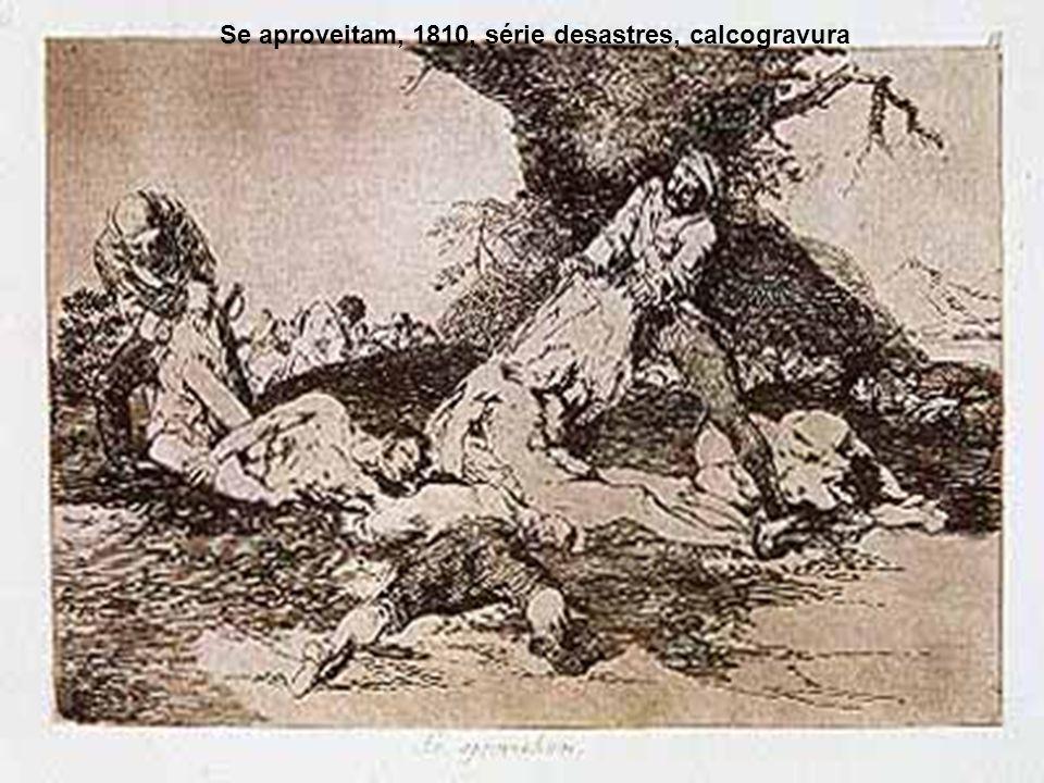 Se aproveitam, 1810, série desastres, calcogravura