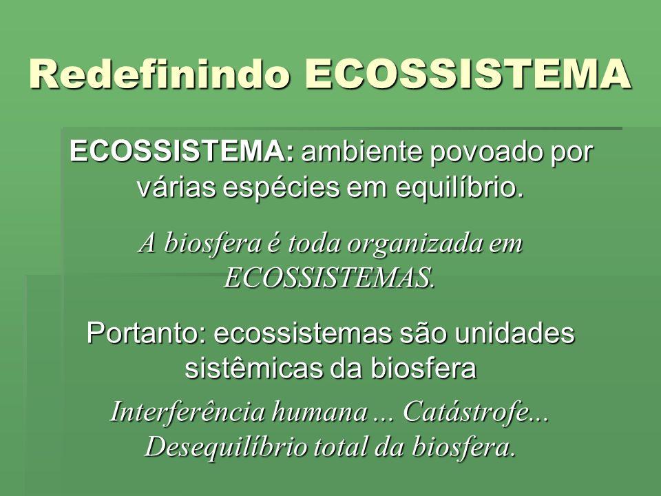Redefinindo ECOSSISTEMA