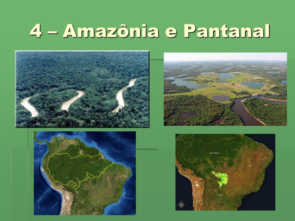 4 – Amazônia e Pantanal