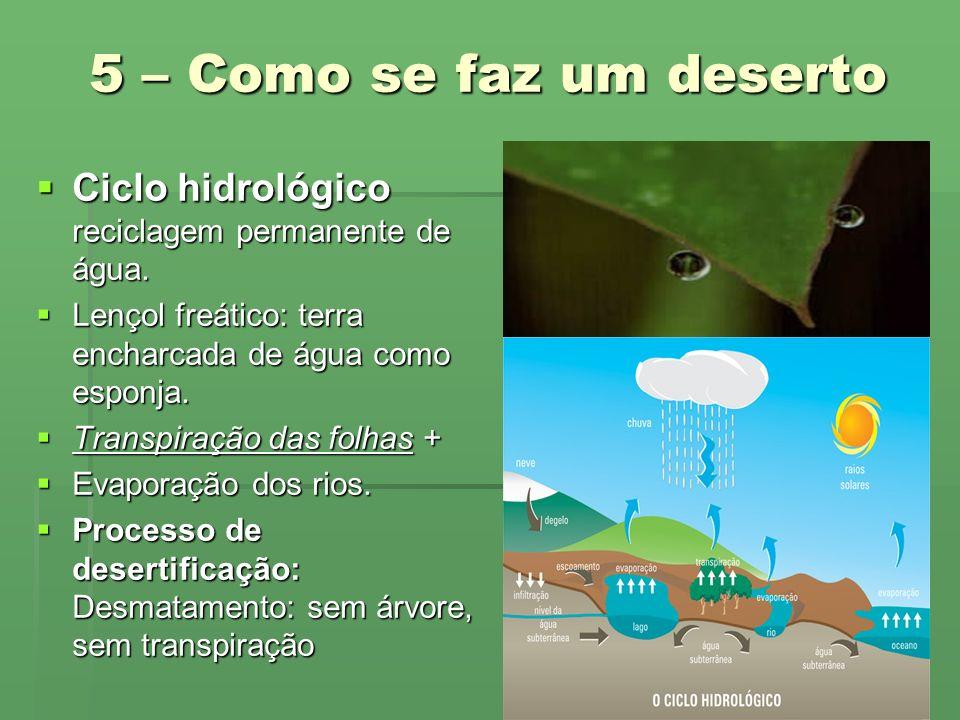5 – Como se faz um deserto Ciclo hidrológico reciclagem permanente de água. Lençol freático: terra encharcada de água como esponja.