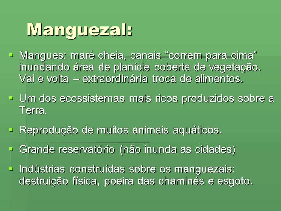 Manguezal:
