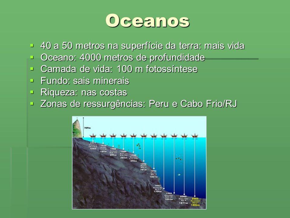 Oceanos 40 a 50 metros na superfície da terra: mais vida