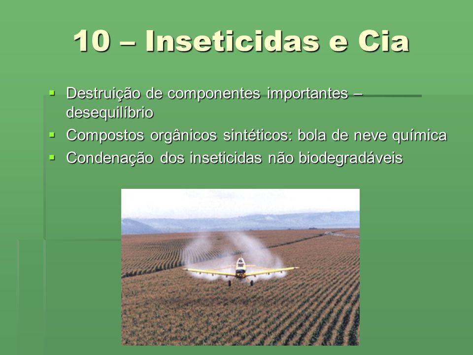 10 – Inseticidas e Cia Destruição de componentes importantes – desequilíbrio. Compostos orgânicos sintéticos: bola de neve química.