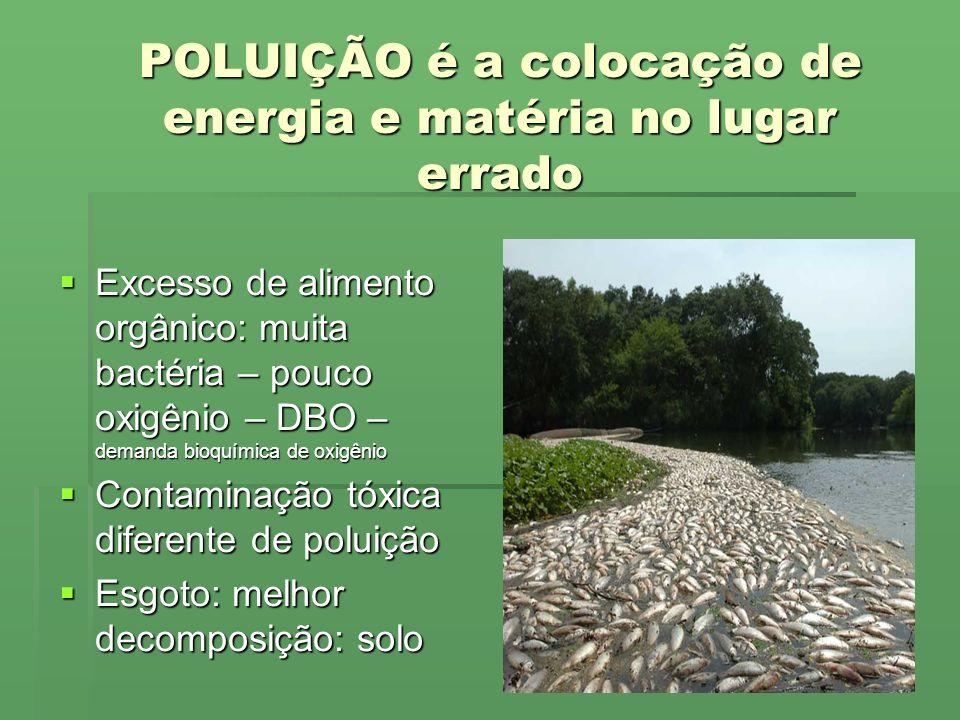 POLUIÇÃO é a colocação de energia e matéria no lugar errado