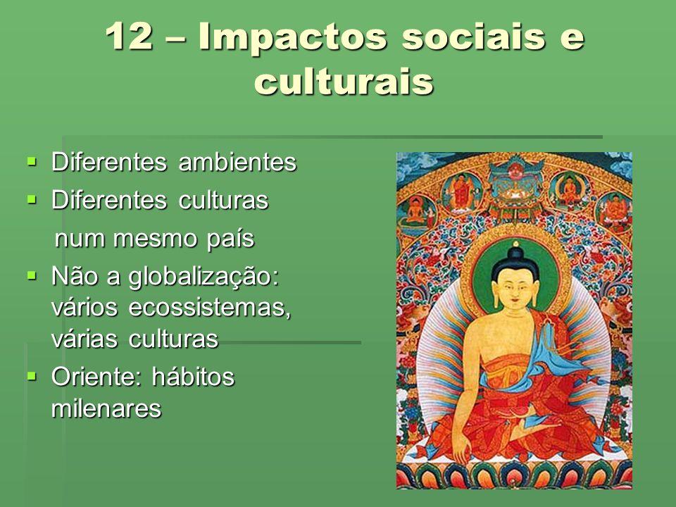 12 – Impactos sociais e culturais