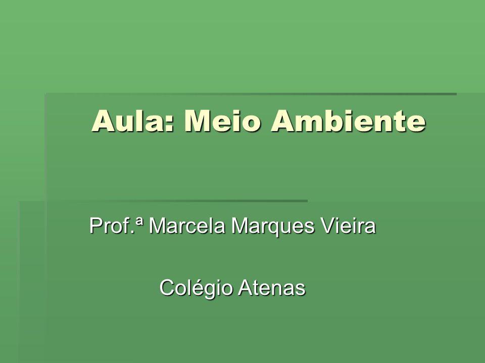 Prof.ª Marcela Marques Vieira Colégio Atenas