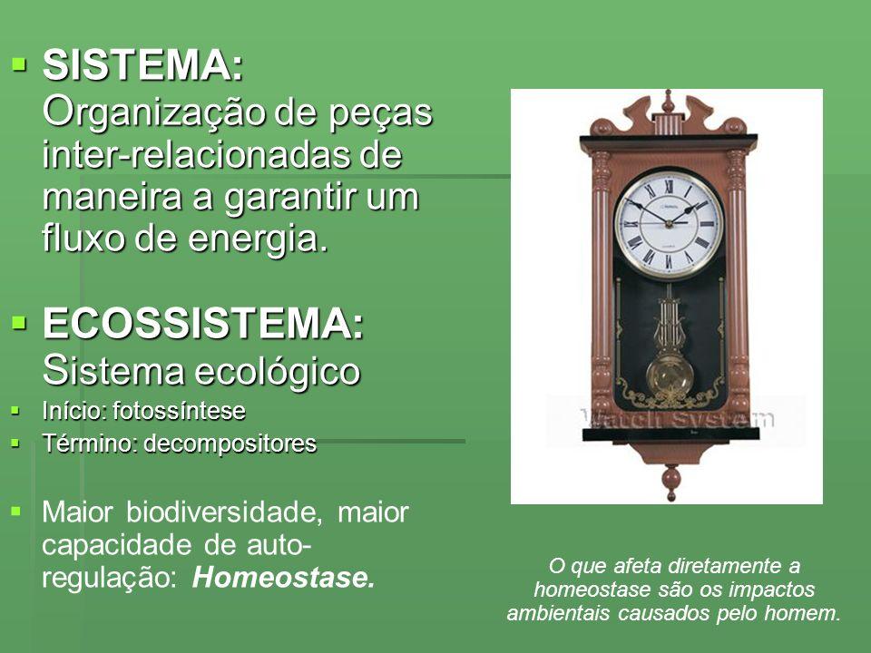ECOSSISTEMA: Sistema ecológico