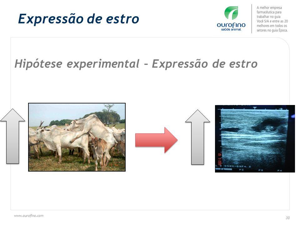 Expressão de estro Hipótese experimental – Expressão de estro