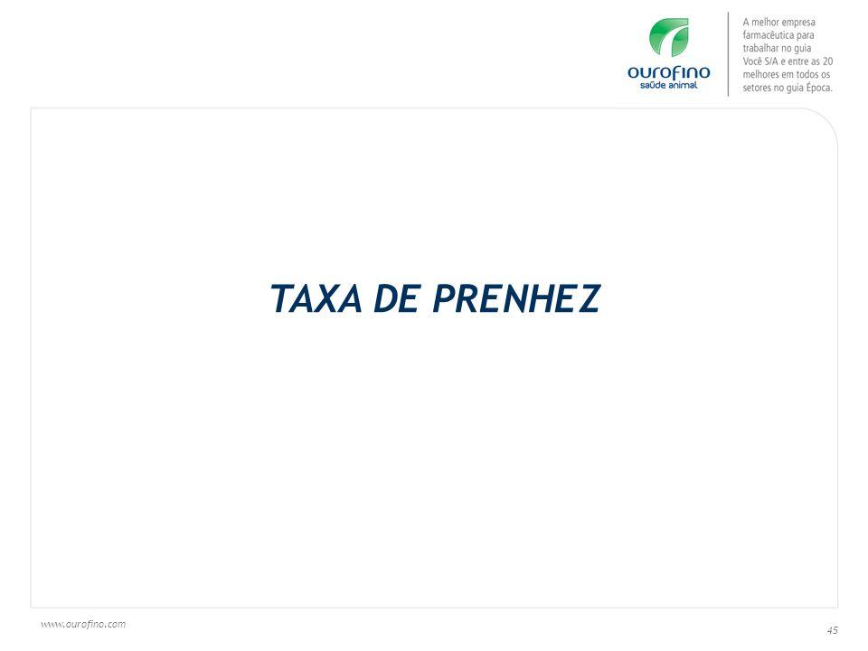 TAXA DE PRENHEZ