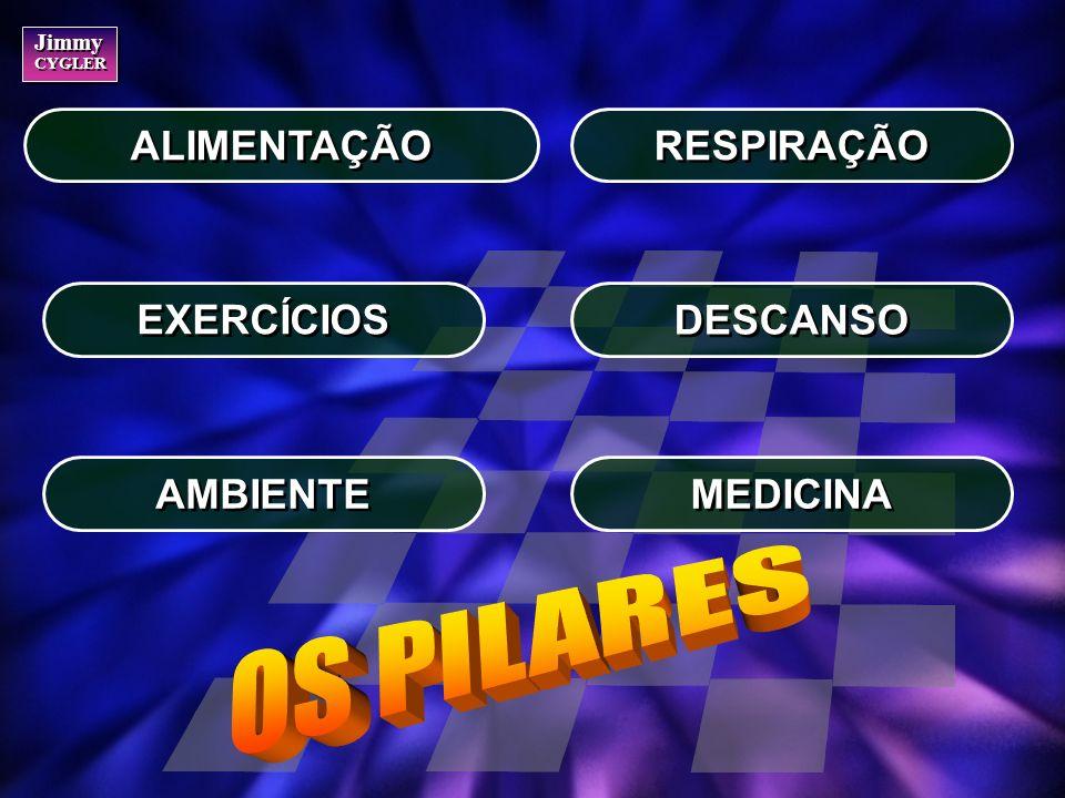 OS PILARES ALIMENTAÇÃO RESPIRAÇÃO EXERCÍCIOS DESCANSO AMBIENTE