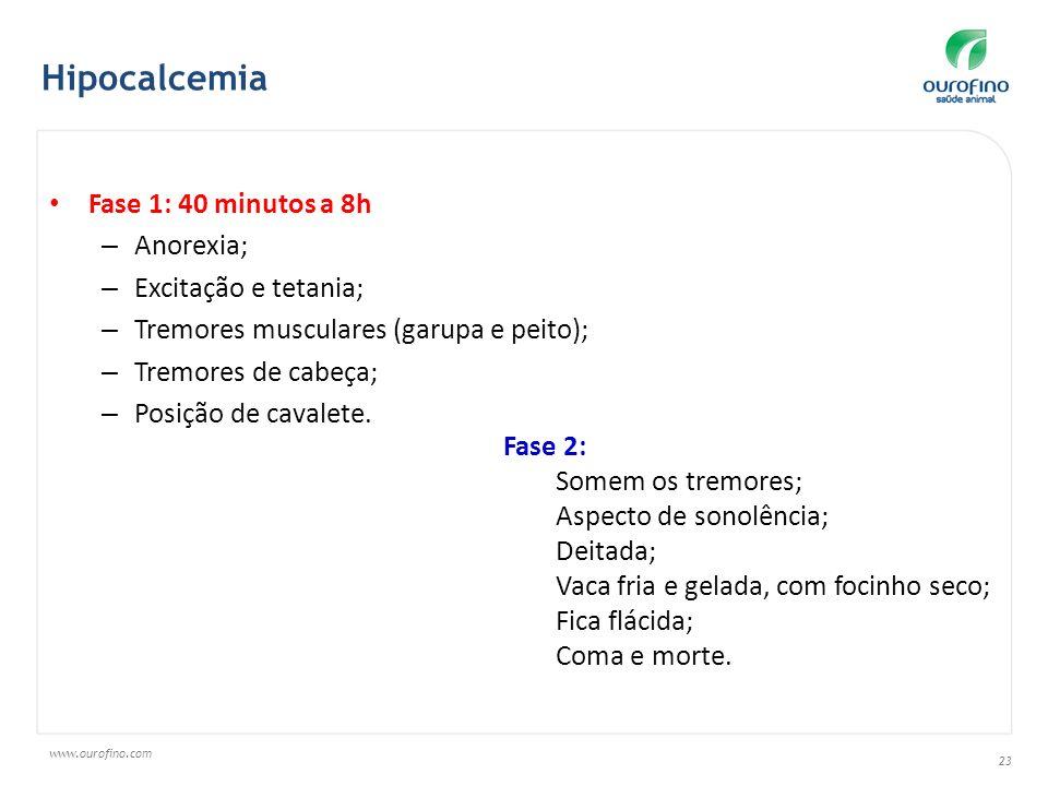 Hipocalcemia Fase 1: 40 minutos a 8h Anorexia; Excitação e tetania;