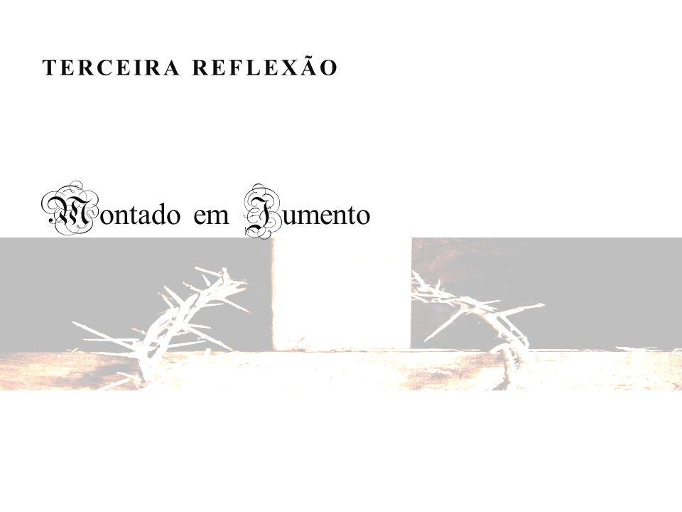 TERCEIRA REFLEXÃO Montado em Jumento