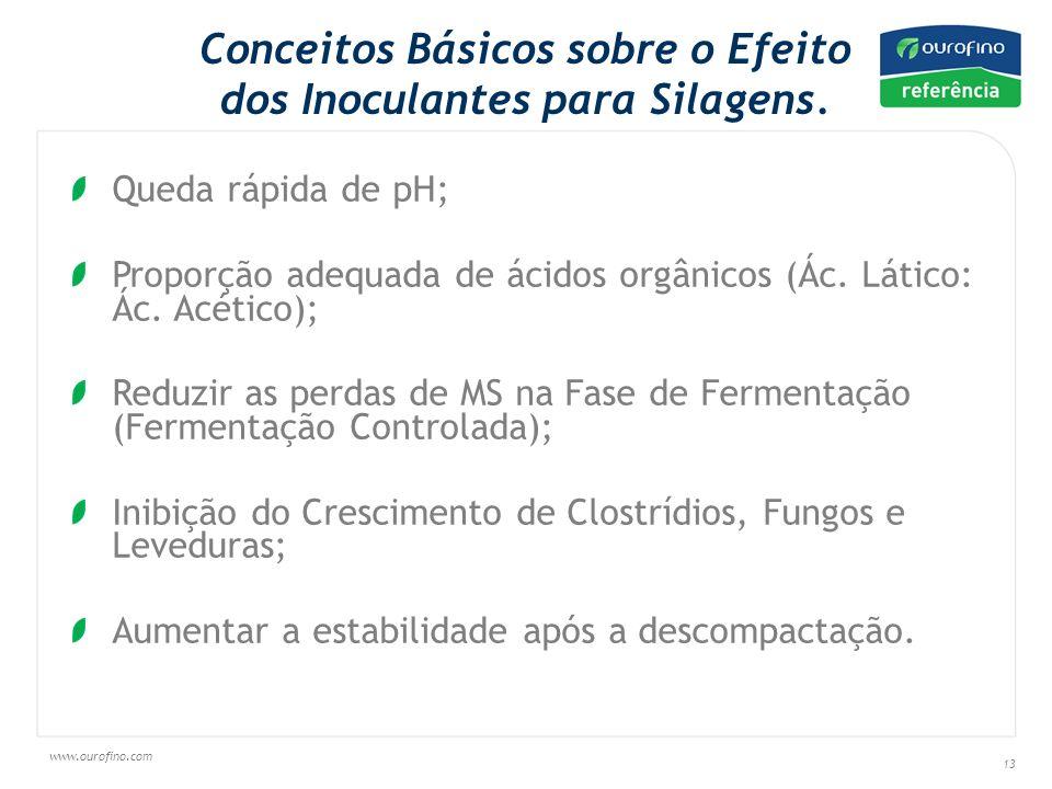 Conceitos Básicos sobre o Efeito dos Inoculantes para Silagens.