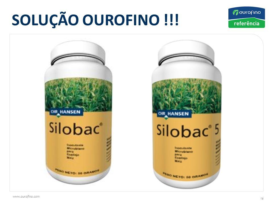 SOLUÇÃO OUROFINO !!!