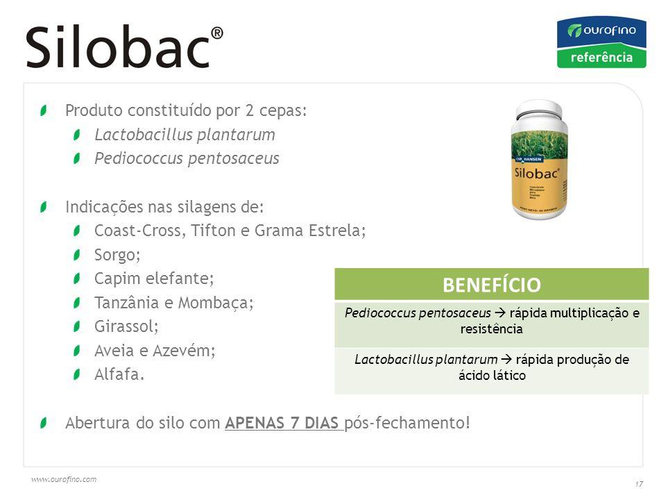 BENEFÍCIO Produto constituído por 2 cepas: Lactobacillus plantarum
