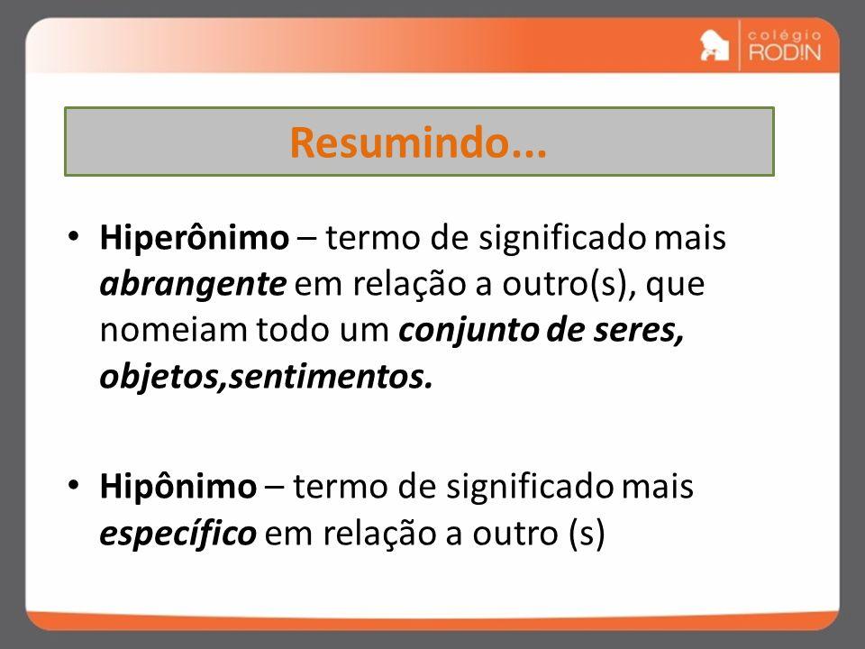 Resumindo... Hiperônimo – termo de significado mais abrangente em relação a outro(s), que nomeiam todo um conjunto de seres, objetos,sentimentos.