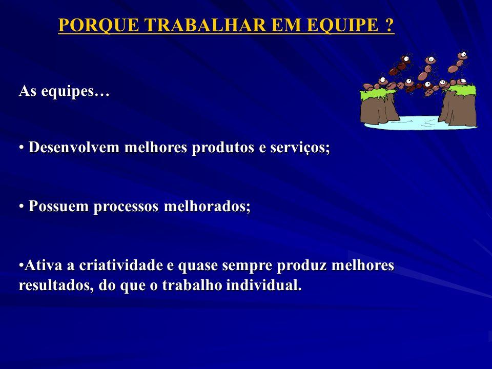 PORQUE TRABALHAR EM EQUIPE