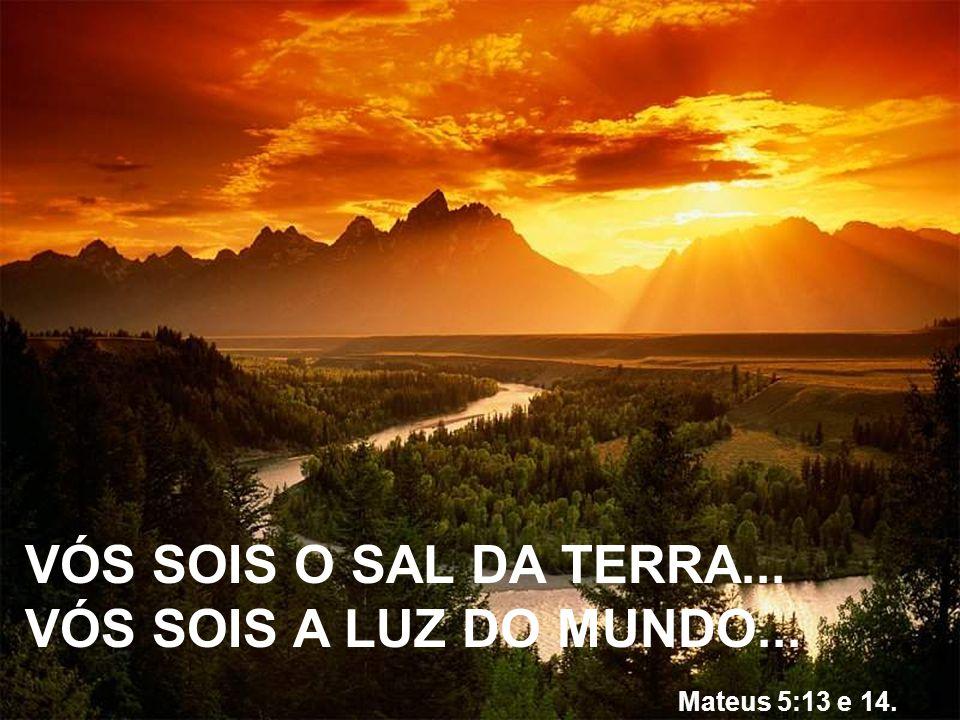 VÓS SOIS O SAL DA TERRA... VÓS SOIS A LUZ DO MUNDO... Mateus 5:13 e 14.