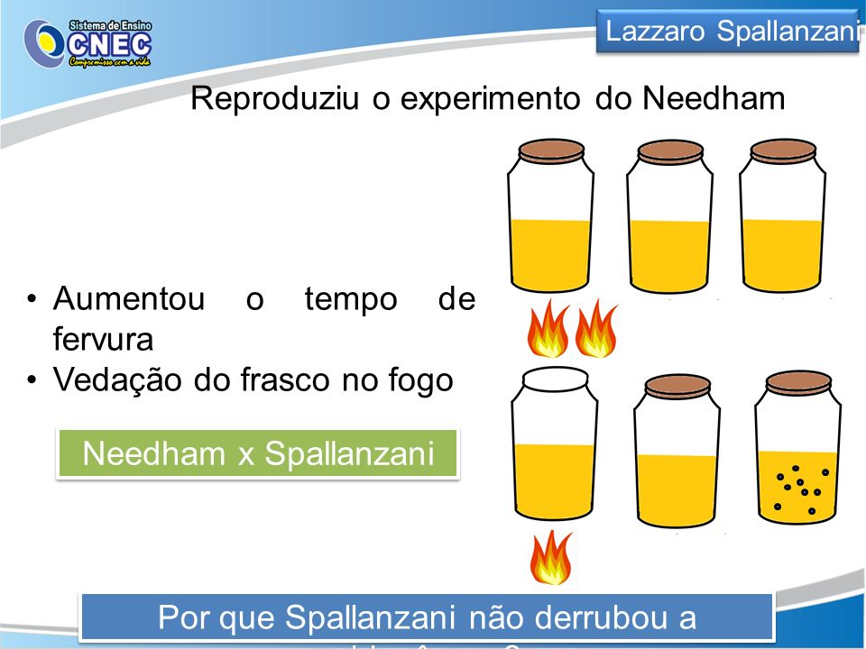 Reproduziu o experimento do Needham