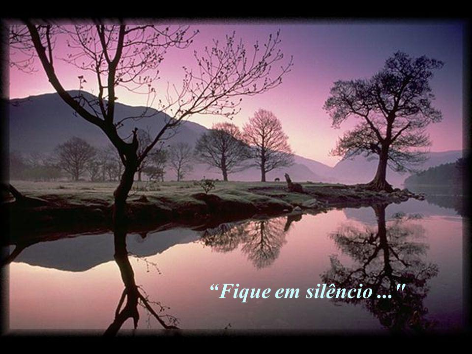 Fique em silêncio ...