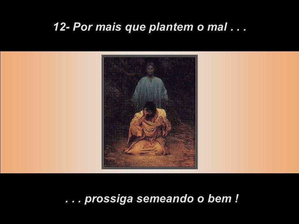 12- Por mais que plantem o mal . . . . . . prossiga semeando o bem !