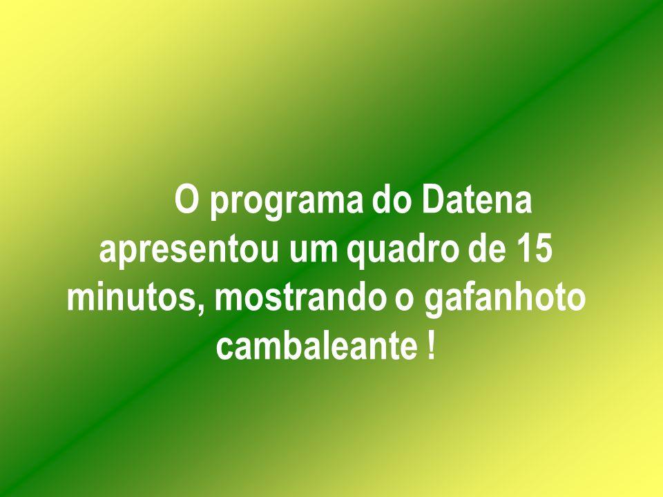 O programa do Datena apresentou um quadro de 15 minutos, mostrando o gafanhoto cambaleante !