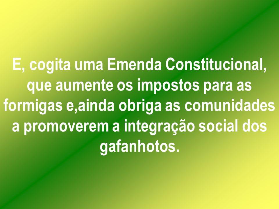 E, cogita uma Emenda Constitucional, que aumente os impostos para as formigas e,ainda obriga as comunidades a promoverem a integração social dos gafanhotos.