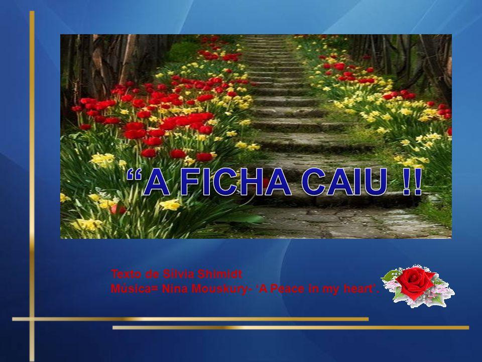 A FICHA CAIU !! Texto de Sílvia Shimidt