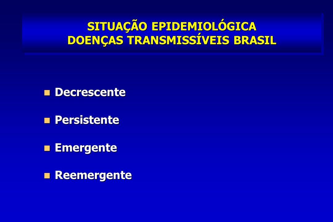 SITUAÇÃO EPIDEMIOLÓGICA DOENÇAS TRANSMISSÍVEIS BRASIL
