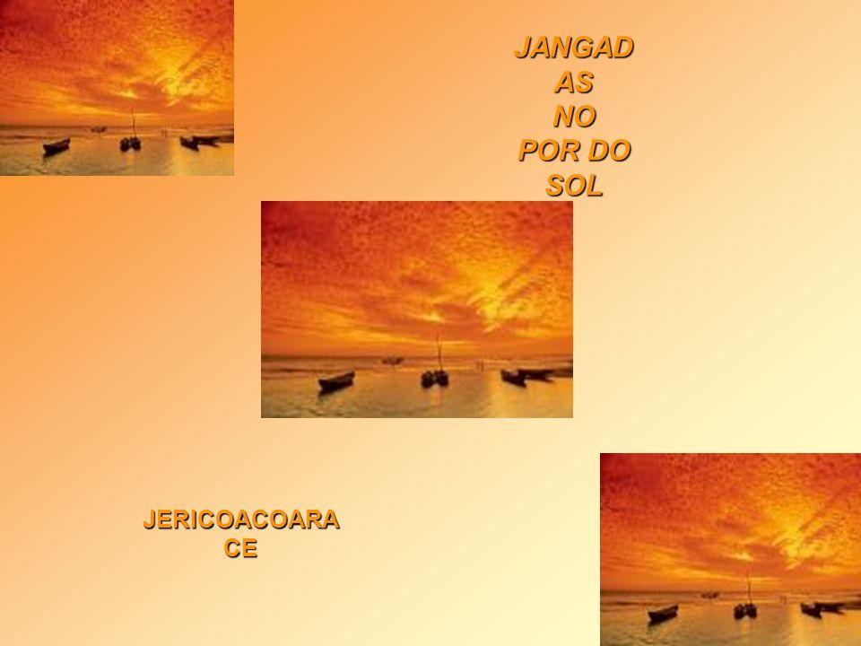 JANGADAS NO POR DO SOL JERICOACOARA CE