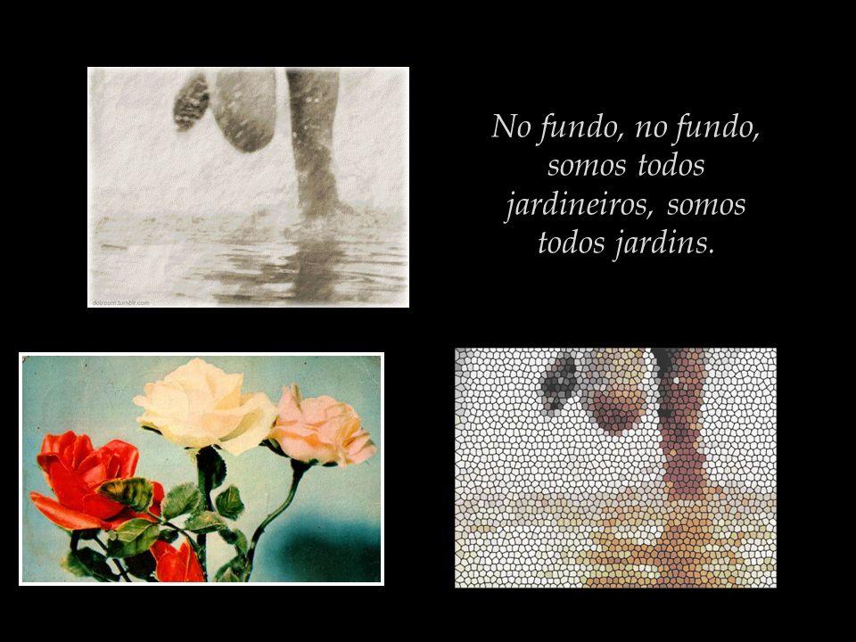No fundo, no fundo, somos todos jardineiros, somos todos jardins.