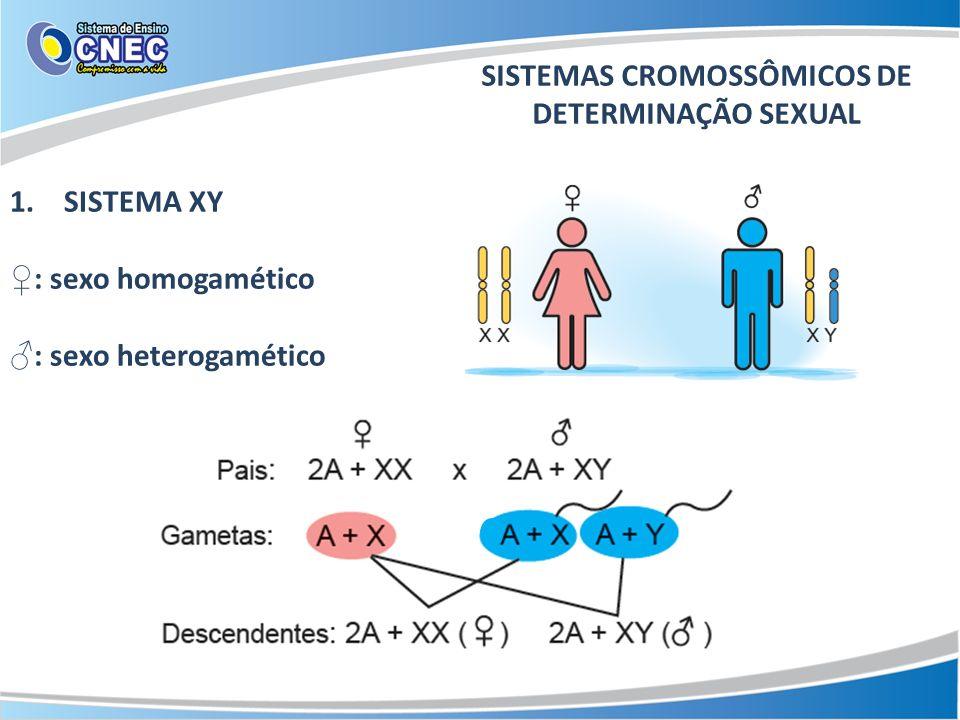 SISTEMAS CROMOSSÔMICOS DE DETERMINAÇÃO SEXUAL
