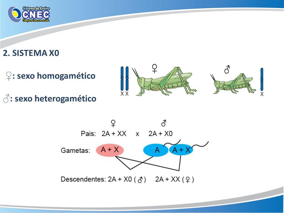 2. SISTEMA X0 ♀: sexo homogamético ♂: sexo heterogamético