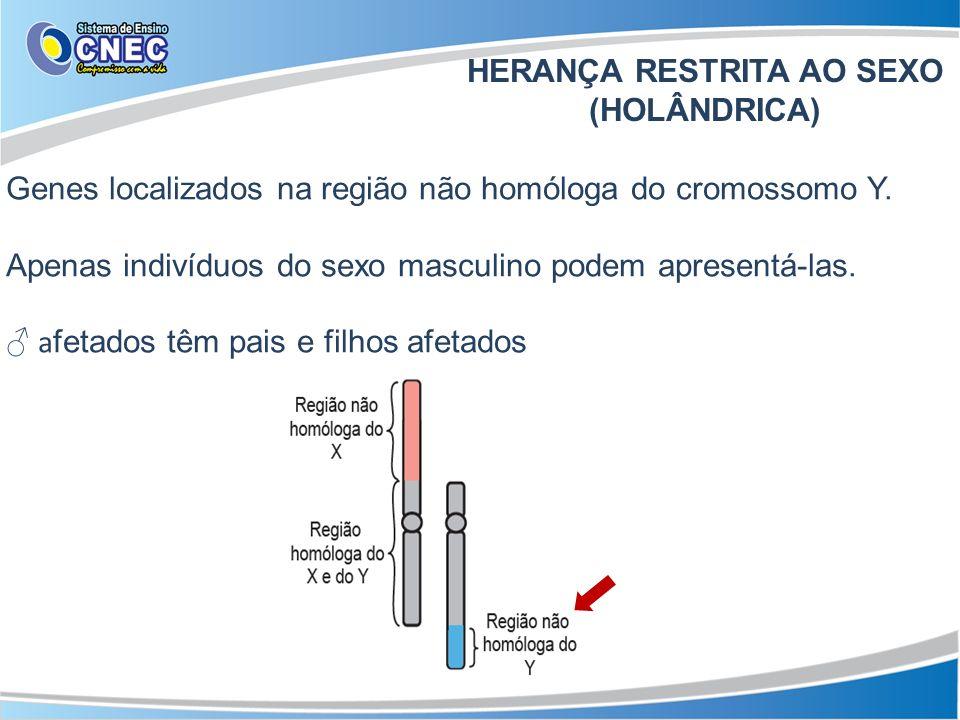 HERANÇA RESTRITA AO SEXO (HOLÂNDRICA)