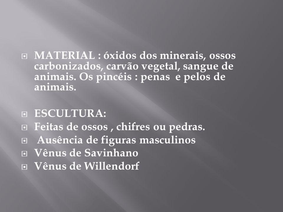MATERIAL : óxidos dos minerais, ossos carbonizados, carvão vegetal, sangue de animais. Os pincéis : penas e pelos de animais.
