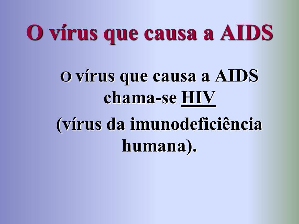 O vírus que causa a AIDS (vírus da imunodeficiência humana).