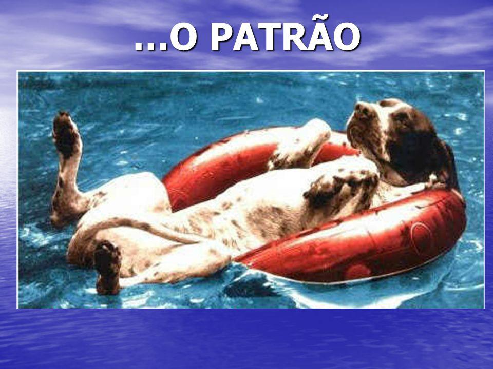 …O PATRÃO Ici, on ne connait pas….