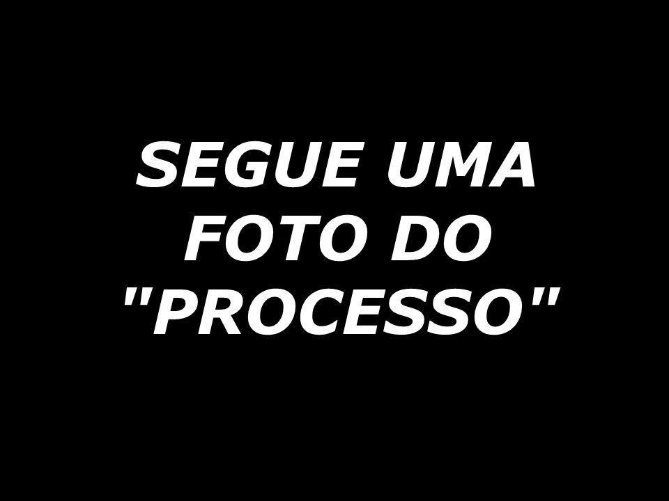 SEGUE UMA FOTO DO PROCESSO