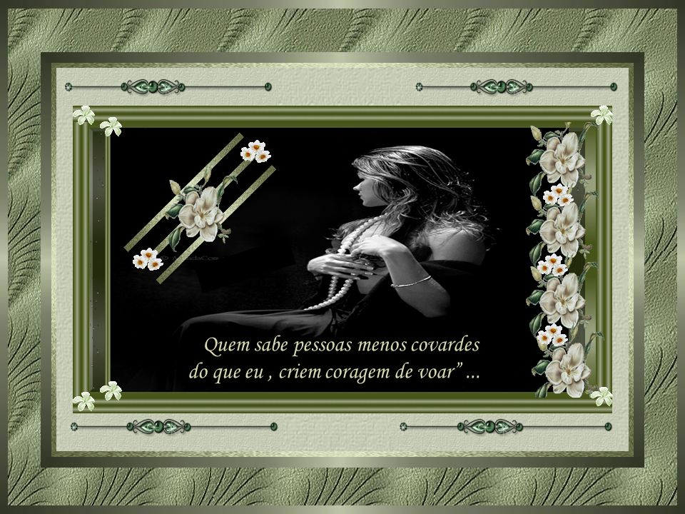 Quem sabe pessoas menos covardes do que eu , criem coragem de voar ...