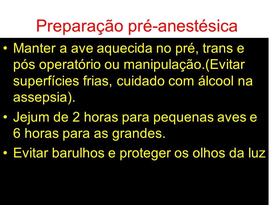 Preparação pré-anestésica