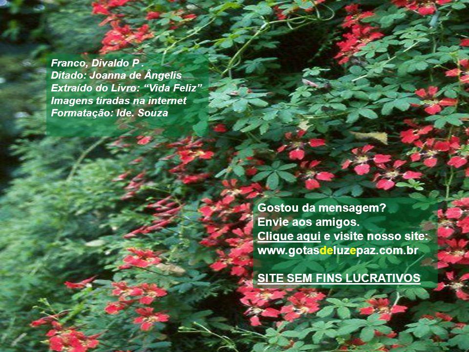 Clique aqui e visite nosso site: www.gotasdeluzepaz.com.br