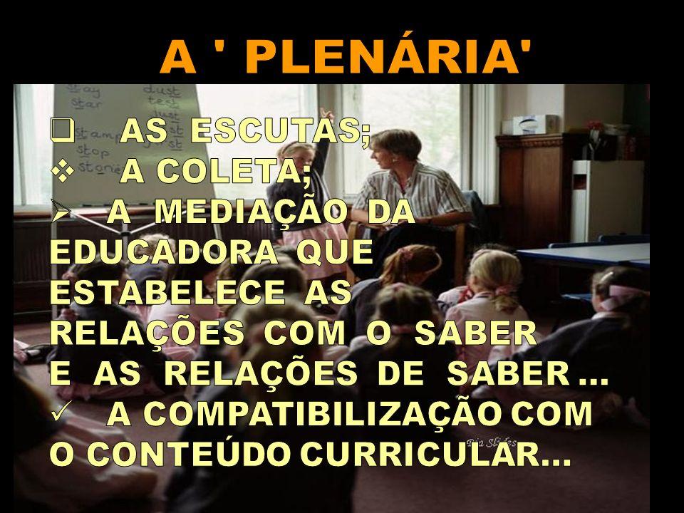 A PLENÁRIA AS ESCUTAS; A COLETA; A MEDIAÇÃO DA EDUCADORA QUE