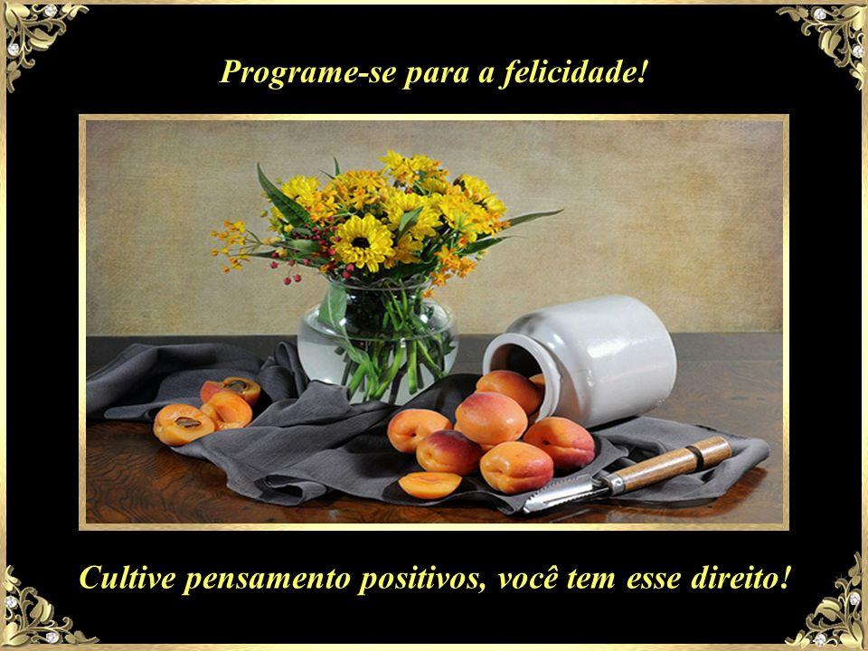 Programe-se para a felicidade!