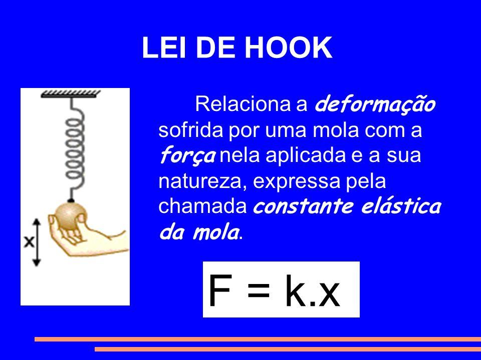 LEI DE HOOK