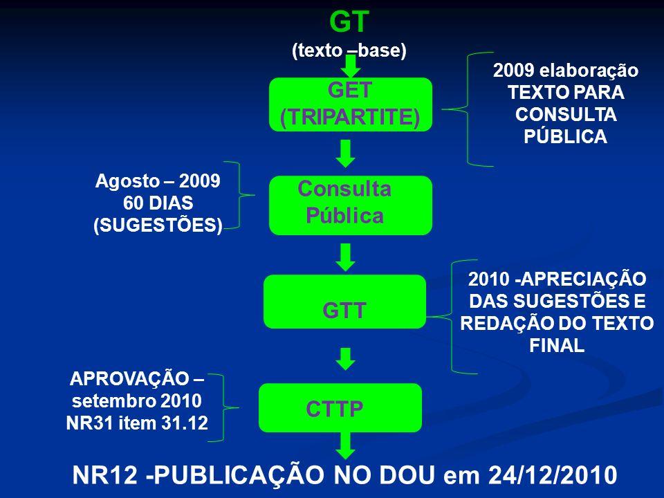 GT NR12 -PUBLICAÇÃO NO DOU em 24/12/2010 GET (TRIPARTITE) Consulta