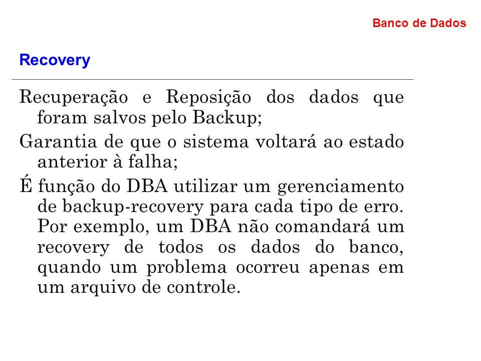 Recuperação e Reposição dos dados que foram salvos pelo Backup;
