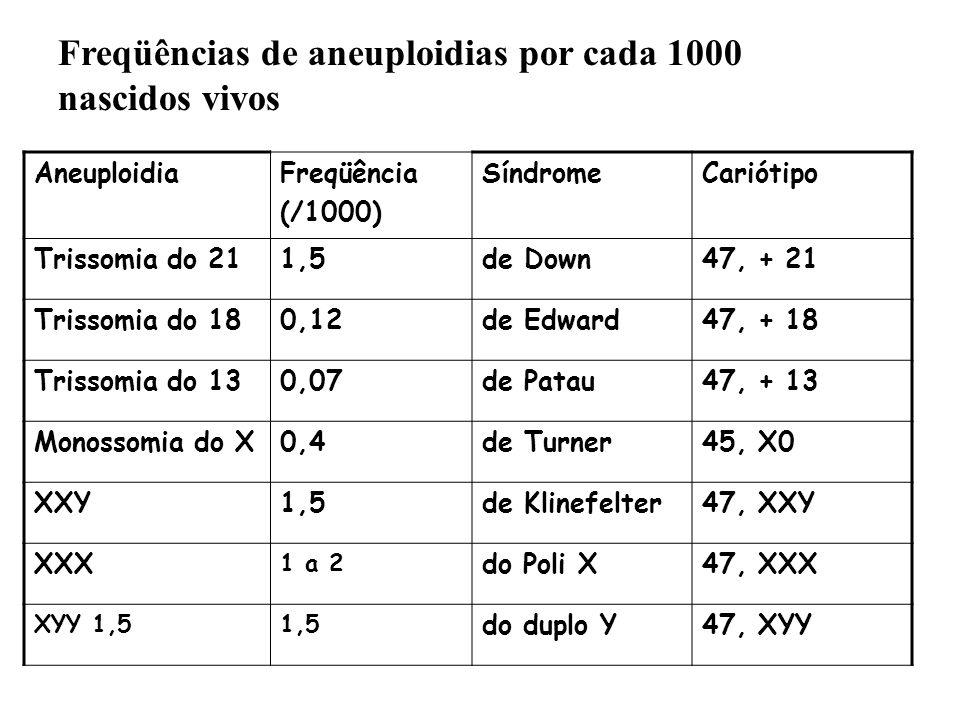 Freqüências de aneuploidias por cada 1000 nascidos vivos