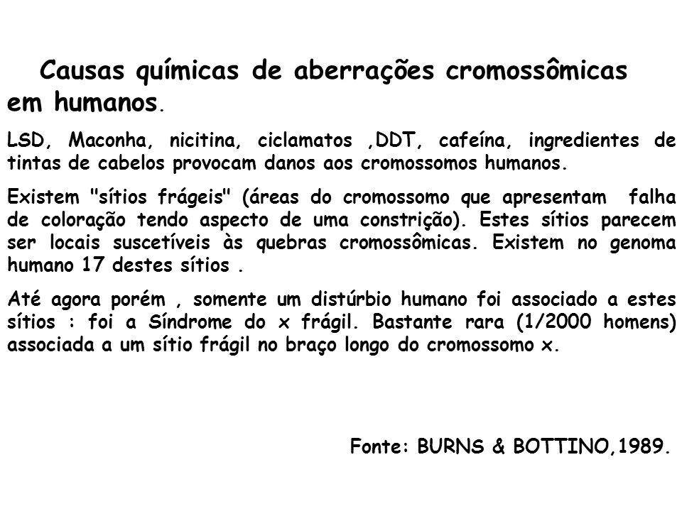 Causas químicas de aberrações cromossômicas em humanos.
